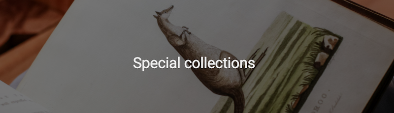 Screenshot of Special collections page header image
