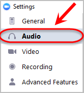 the audio option is highlighted