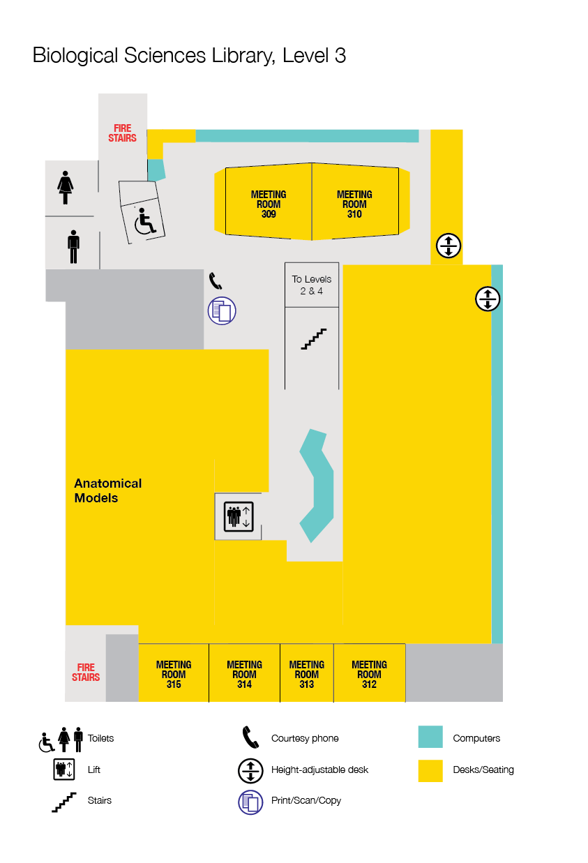 Level 3 floorplan