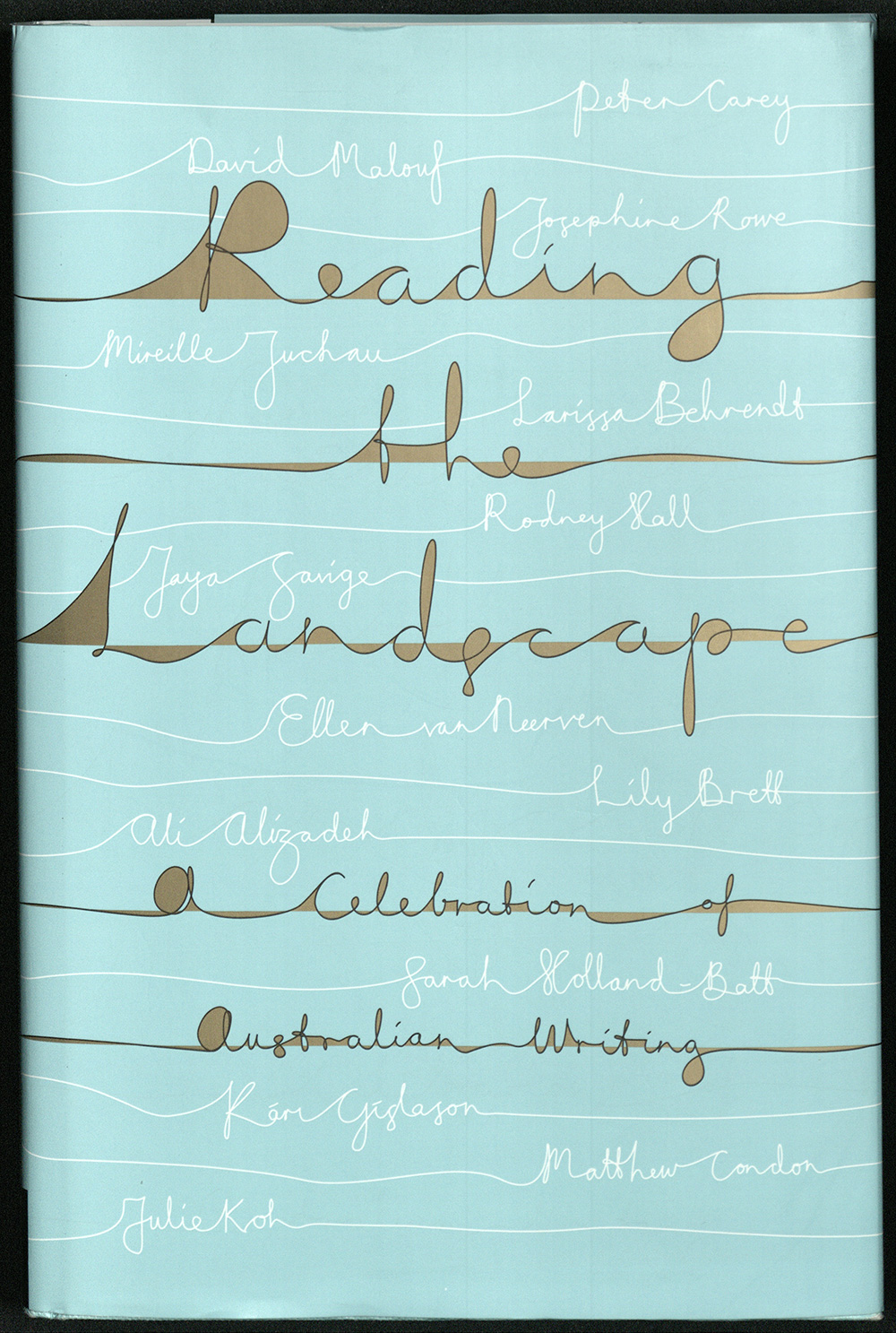 Book cover of 'Reading the Landscape'.