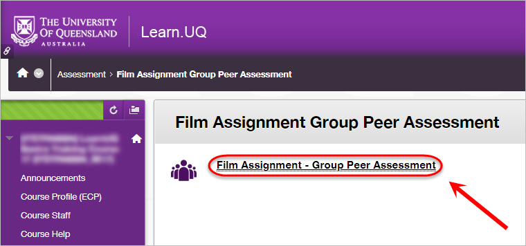 group peer assessment