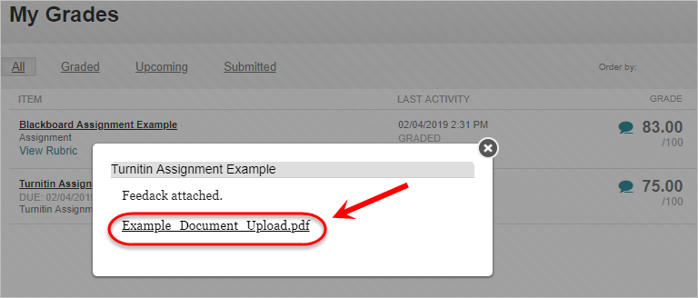 Popup box with attached document circled.