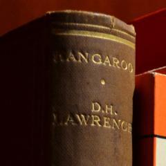 Kangaroo by D.H. Lawrence